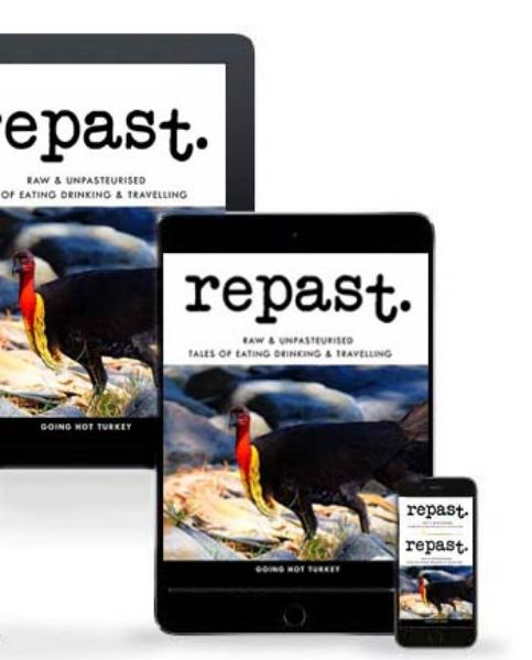 Picture of repast Digital Subscription - 4 Editions