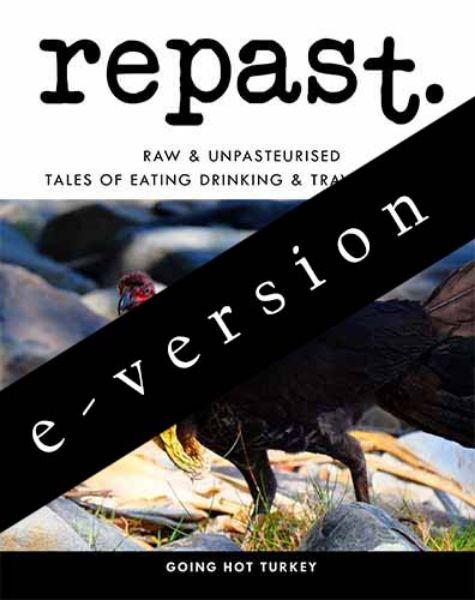 Picture of repast 17 e-version - single